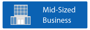 Mid-Sized Business Disaster Recovery Plan